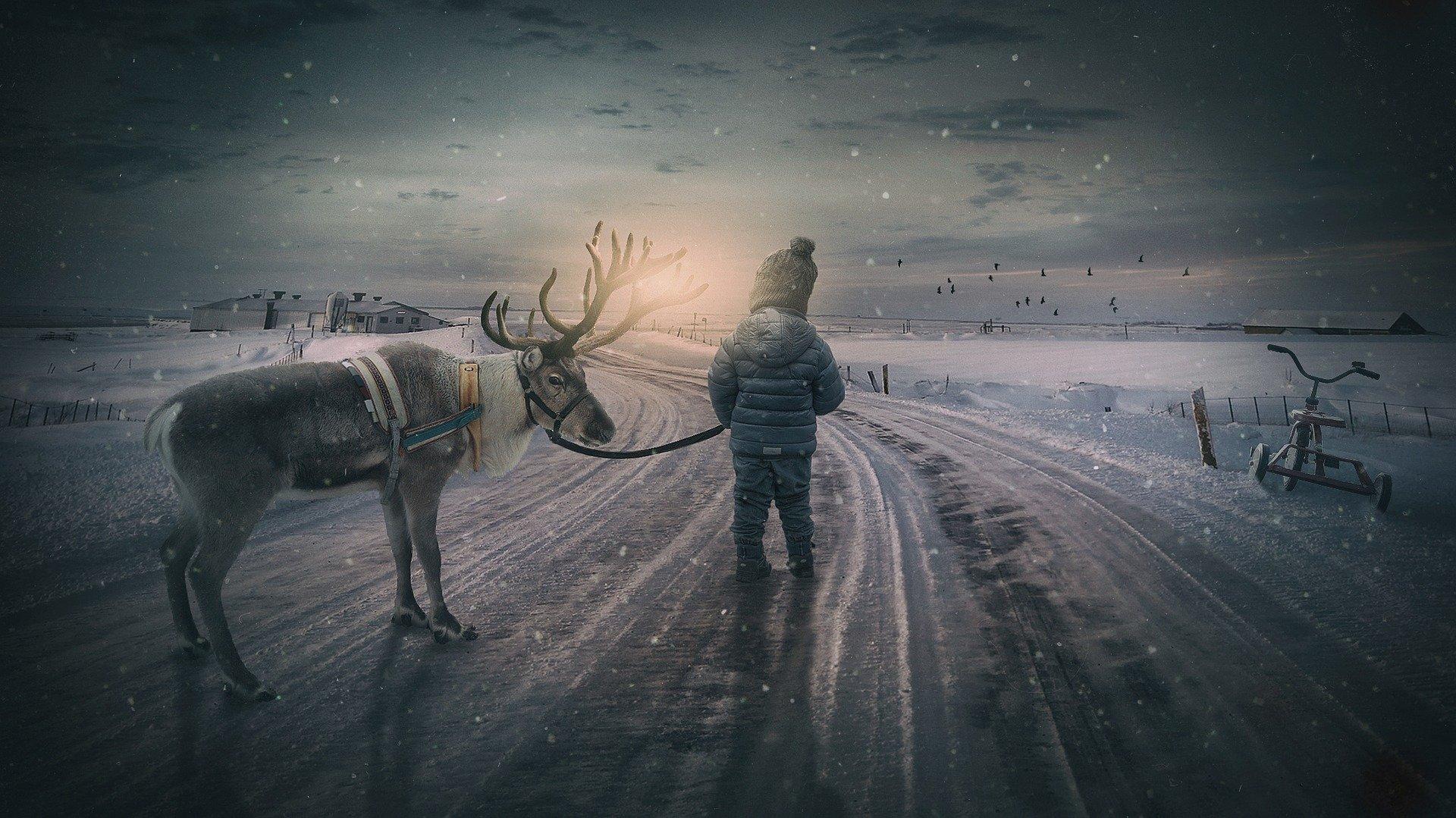 Weihnachten & Sylvester